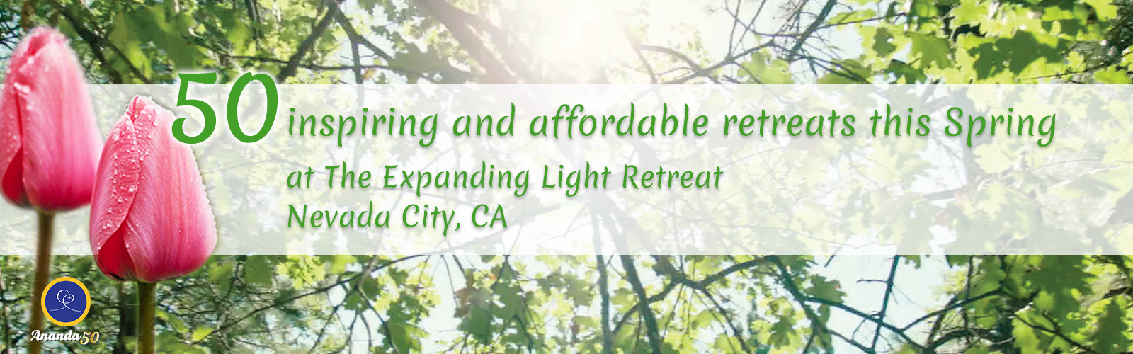 50 Inspiring and Affordable Retreats At Expanding Light