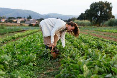 Regenerative Agriculture-1